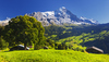 Grindelwald hotels and apartments
